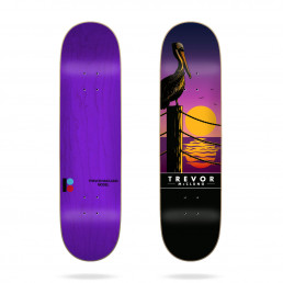 Plan B Trevor Sunset 8.5